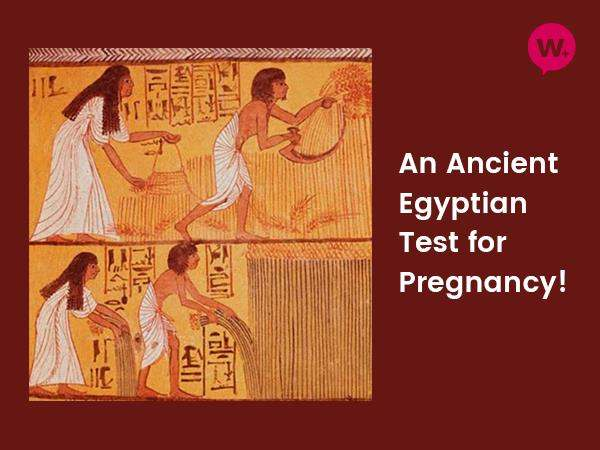 an-ancient-egyptian-test-for-pregnancy