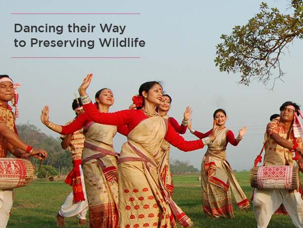 dancing-their-way-to-preserving-wildlife